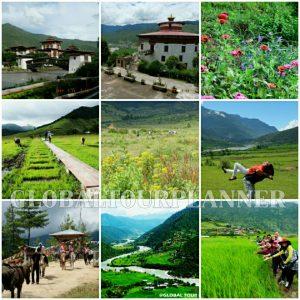 Bhutan Mix