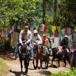Bhutan Riding Horse to Taktsang