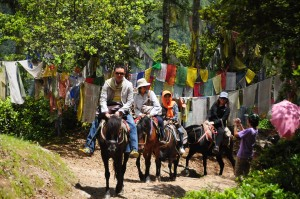 Bhutan Riding Horse to Taktsang