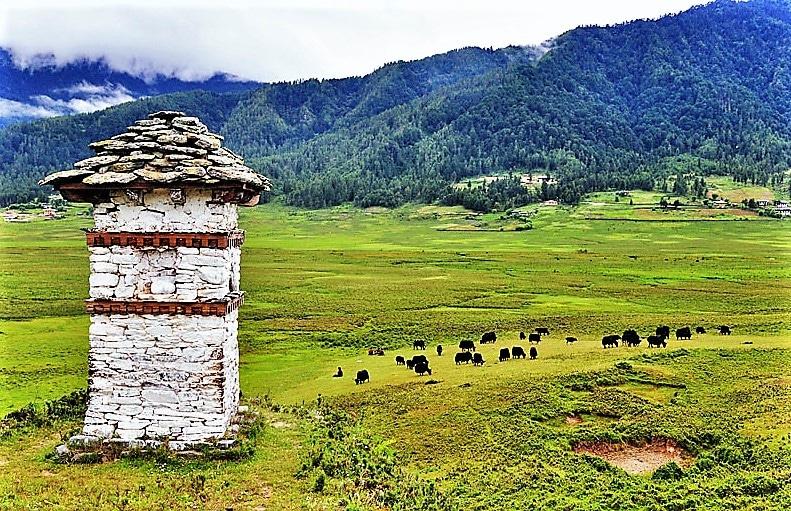 Bhutan View of Phobjikha Valley in Gantey