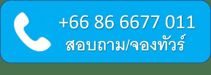 Tel +66866677011
